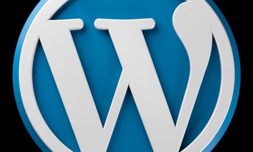 טעינת קבצי CSS ו JS לתוכנית וורדפרס
